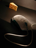 Mouse and cheese. A computer mouse ambush to a piece of cheese Royalty Free Stock Photography