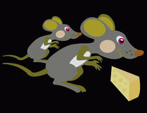 Mouse and cheese. Two baby mouses have found piece of the cheese Royalty Free Stock Photos