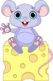 Mouse  on cheese Royalty Free Stock Photography