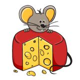 Mouse cheese Stock Image