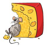 Mouse with cheese Royalty Free Stock Photo