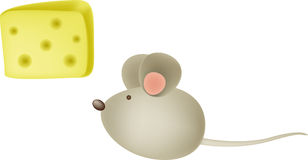 Mouse and cheese Stock Images