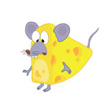 Mouse_in_cheese. Funny mouse in cheese standing Stock Illustration