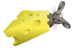 Mouse and cheese. Mouse next to a piece of cheese Stock Photography