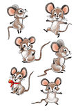 Mouse Royalty Free Stock Images