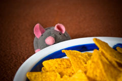 Mouse and chips Stock Photography
