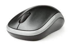 Mouse computer. On white background Stock Images
