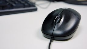Mouse computer. Black mouse computer on the work desk Stock Images