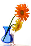 Mouse and Daisies Stock Photos