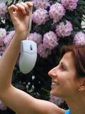 Mouse del calcolatore della holding della ragazza fotografie stock libere da diritti