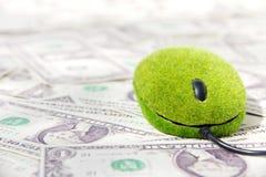 Mouse del calcolatore di Eco Immagini Stock Libere da Diritti