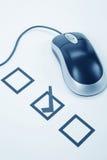 Mouse del calcolatore e del questionario Immagini Stock