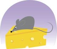 Mouse del formaggio Fotografia Stock Libera da Diritti