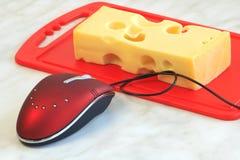 Mouse e formaggio Fotografie Stock Libere da Diritti