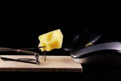 Mouse e mousetrap del calcolatore Immagini Stock