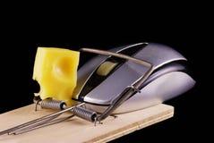 Mouse e mousetrap del calcolatore Fotografie Stock Libere da Diritti