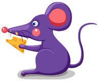 Mouse eating cheese stock illustration