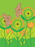 Mouse Eyes Flower Stock Photography