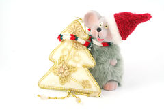 Mouse and fir Royalty Free Stock Photography
