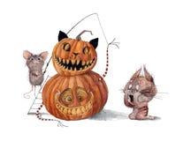 Free Mouse Fun On Halloween Stock Image - 194791631