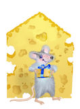 A mouse is given by the piece of cheese Stock Photos