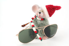 Mouse and glasses Stock Photos