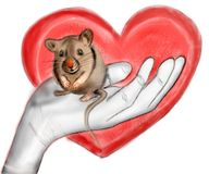 Mouse in glove hands looking at you vector illustration