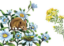 Mouse, grasshoper blue meadow flowers. Mouse hunting grasshoper blue meadow flowers, Isolated on white Stock Photo