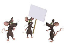 Mouse holding a sign. Isloated on the white background Stock Images