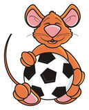 Mouse holding a soccer ball Royalty Free Stock Photography