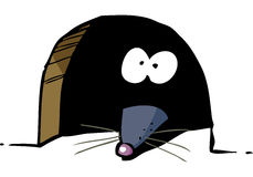Mouse in hole Stock Images