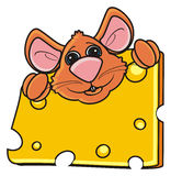 Mouse  hugging one piece of cheese Royalty Free Stock Photos