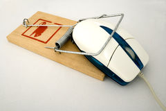 Free Mouse In Trap Stock Photography - 5183792