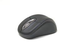 Mouse isolato su bianco immagini stock libere da diritti