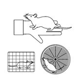 Mouse in lab experiments Stock Photography
