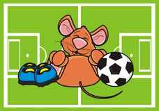 Mouse lies on the football field with the ball and boots Royalty Free Stock Image
