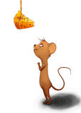 Mouse looking for cheese Royalty Free Stock Photography