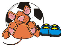 Mouse  lying beside soccer ball and  boots Stock Photography