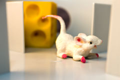 Mouse in Maze Royalty Free Stock Photos