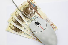 Mouse on money. On-line banking concept. Can symbolize costs of computers, costs of problem computers, or on-line banking etc Stock Image