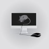 Mouse and monitor Stock Photos