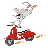 Mouse and motorbike Royalty Free Stock Photography
