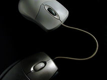 Mouse on Mouse Cyber Sex. Tow connected computer mice stock photography