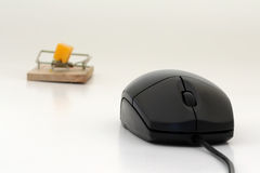 Mouse and mousetrap. A computer mouse and a mousetrap with cheese on it in background Stock Images