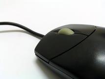 Mouse nero Fotografia Stock