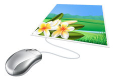 Mouse photo online internet concept Royalty Free Stock Photo