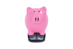 Mouse with Piggy Bank Stock Photo