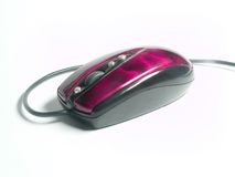Mouse.Pink Royalty Free Stock Photography