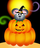 Mouse in the pumpkin Royalty Free Stock Photography
