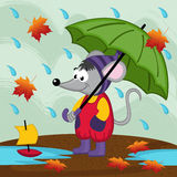 Mouse in rain autumn. Vector illustration, eps Royalty Free Stock Image